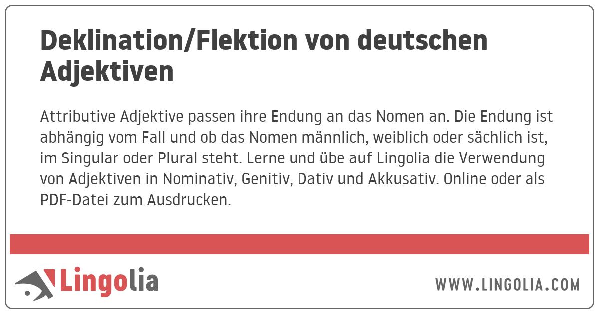 Deklinationflektion Von Deutschen Adjektiven
